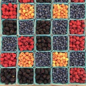 fruits santé naturopathie addict au sucre