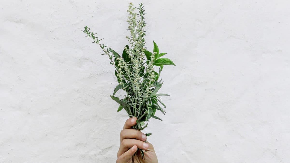 Zero déchet minimalisme désencombrement simplicité naturopathie écologie