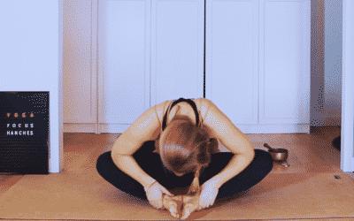cours de yoga en ligne vidéo de yoga relaxation méditation hanches dos souplesse lâcher prise immunité