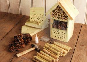 hotel insectes cadeaux responsables sens éthique
